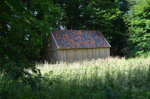 Foto 9 van het album Nieuwbouw schuur oude stijl in Dwingeloo